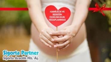 Hamilelik ve Bebeğin Doğumunun Hesaplanması